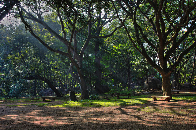 Cubbon Park Cycling routes Bangalore