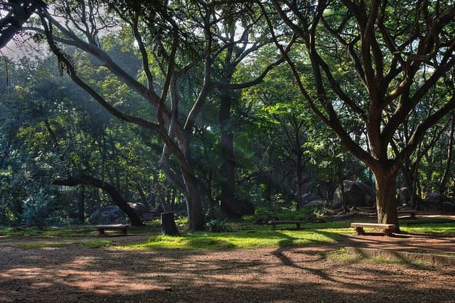 Cubbon Park Cycling routes Bangalore