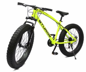 Sturdy Fat Bikes - Best Fat bike in India